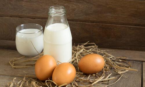 Kiaušiniai ir pieno produktai
